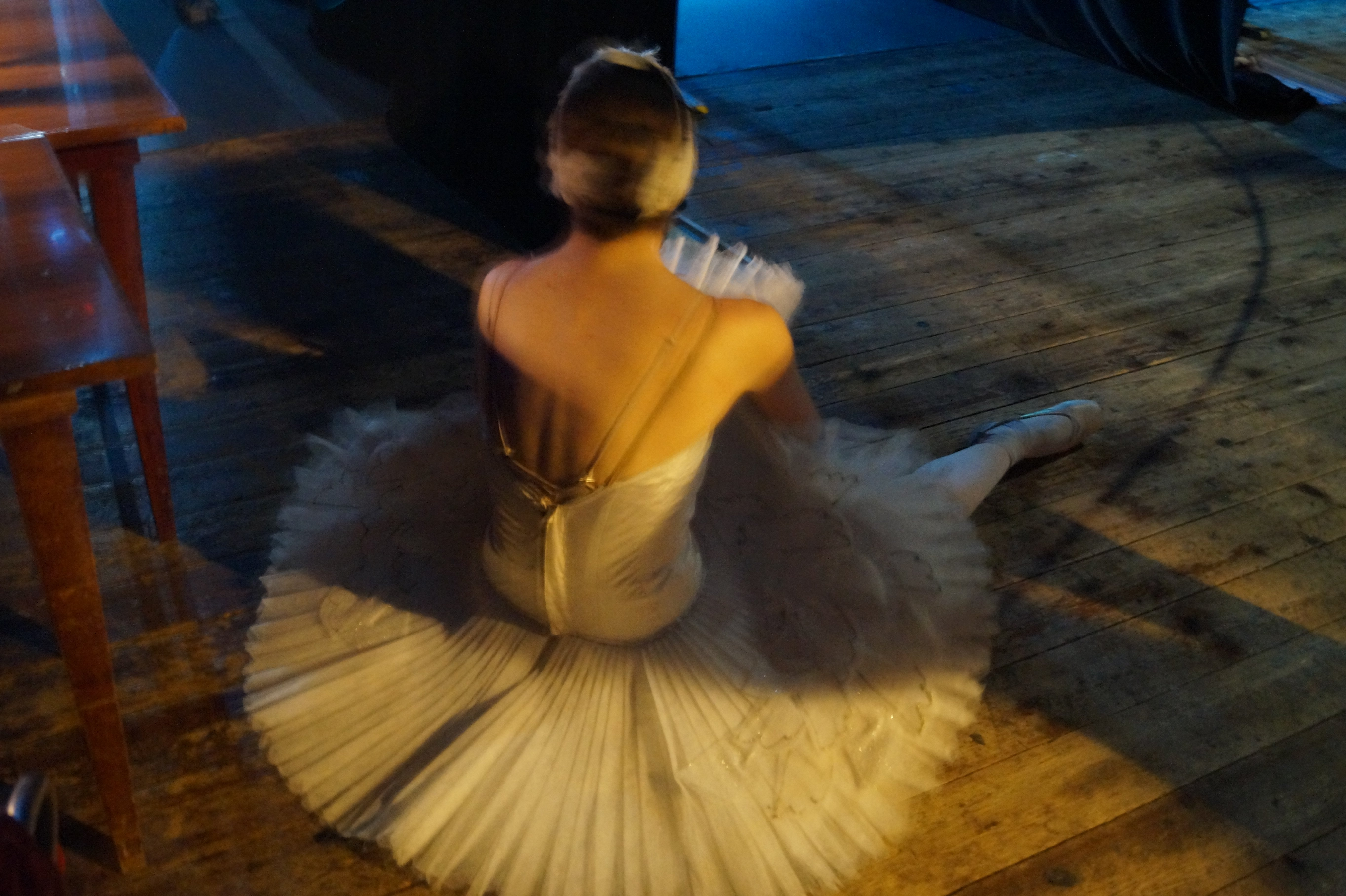 backstage lago de los cisnes